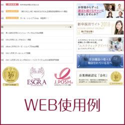 Web利用例